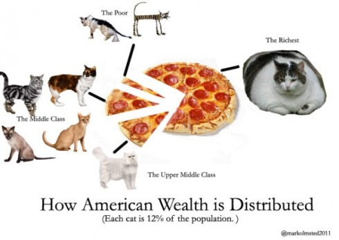 I here the internet likes cats and infographics.