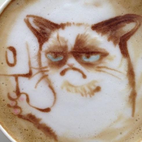 grumpy cat latte art